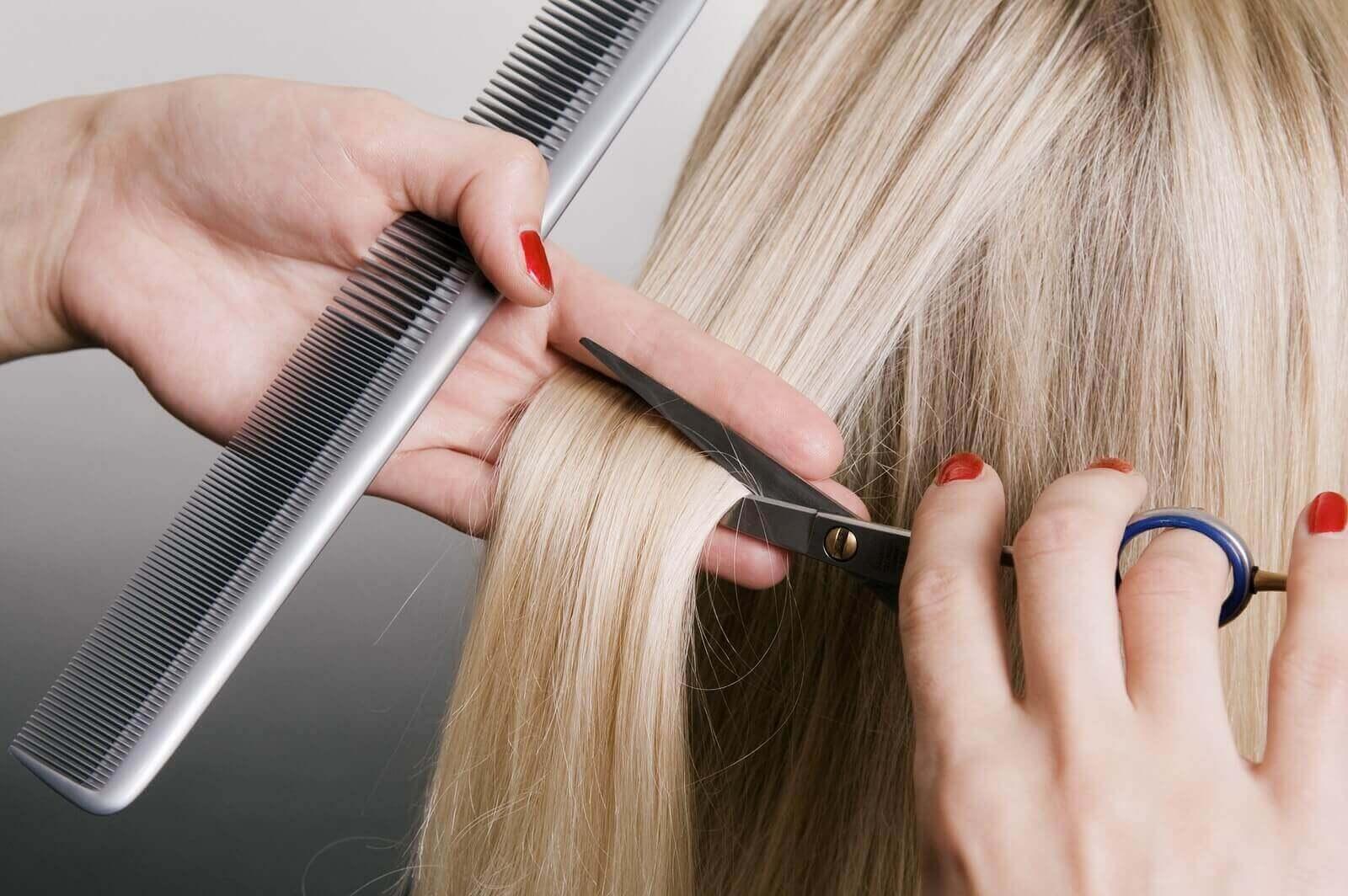 Prestacao de Serviços Pela Internet trabalhando como cabeleireira